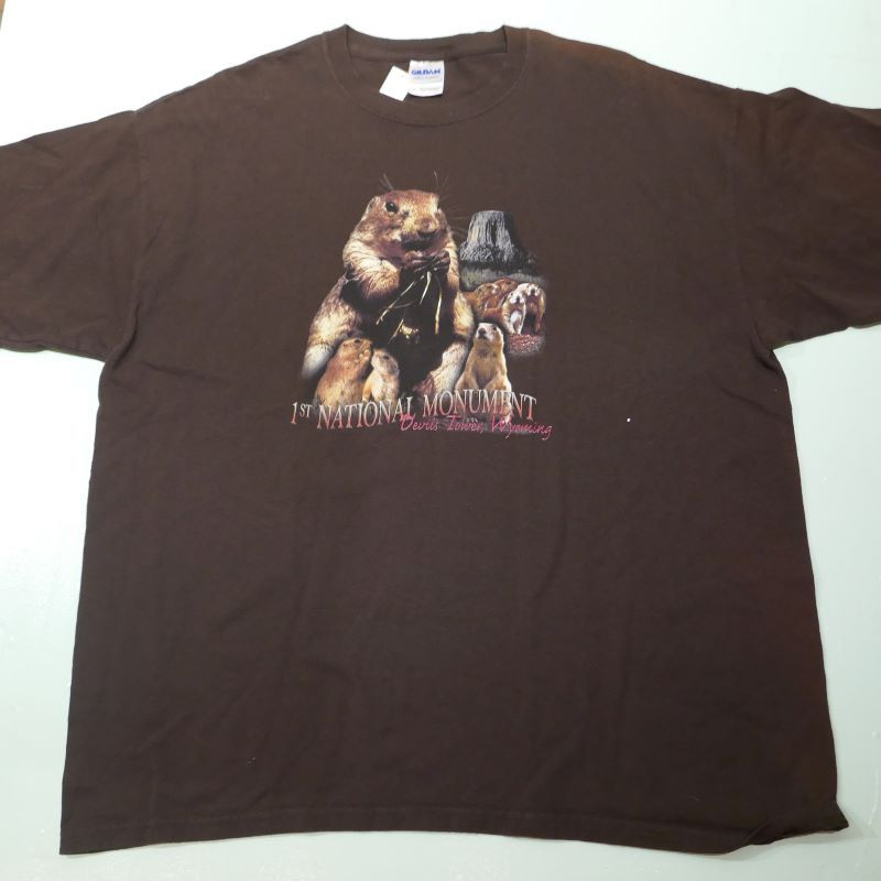USED DEVILS TOWER TEE BROWN